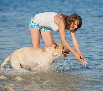 Baden mit Hund: Wo auch Waldi ins Wasser darf