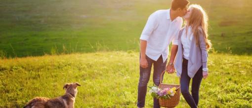Romantikurlaub mit Hund