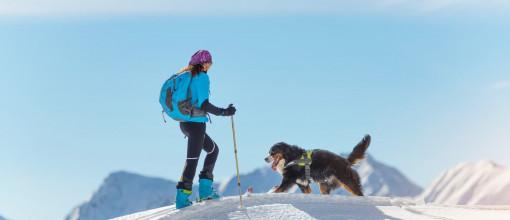 Skitouren mit Hund