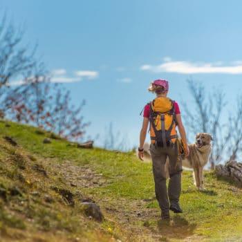Das Wandern ist des Hundes Lust