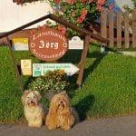Ferienwohnungen im Landhaus Jörg