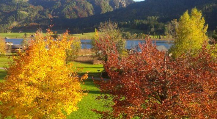 Seehaus Verena direkt am See
