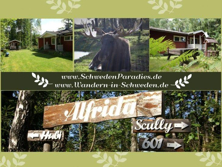 SchwedenParadies Alfrida