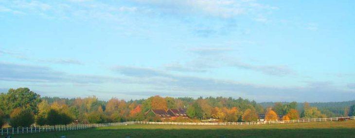 Reiterhof Lüneburger Heide in Alleinlage.