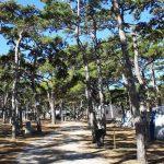Hundefreudlicher Campingplatz Planik