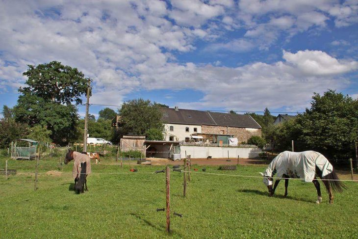 Ferienwohnung Ourtalhof