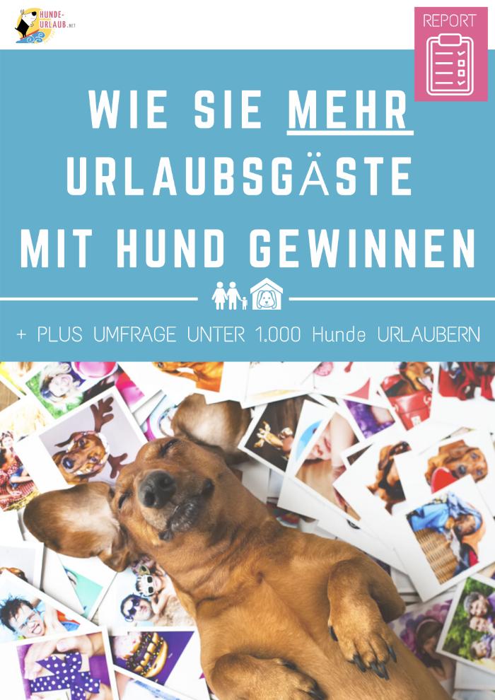 Gratis Ratgeber - mehr Urlaubsgäste mit Hund_cover
