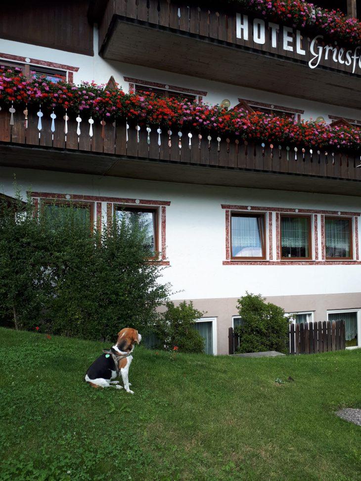 Griesfeld Hotel Residence