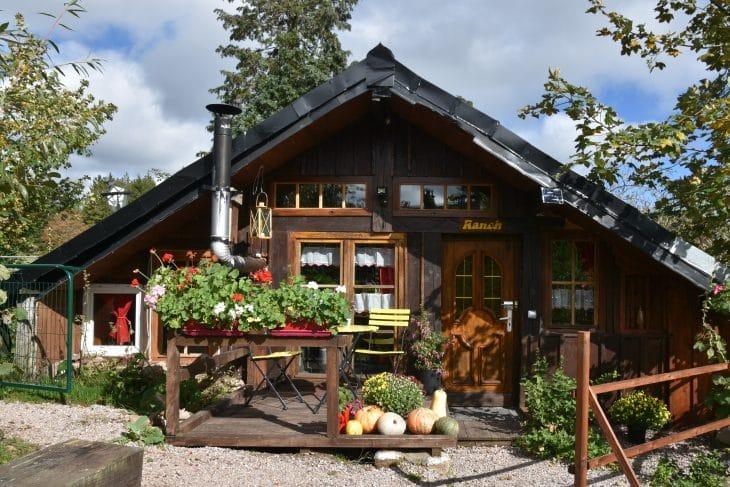 Holzfäller-Hütte in den Vogesen mit Sau